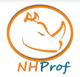 NHibernate Profiler